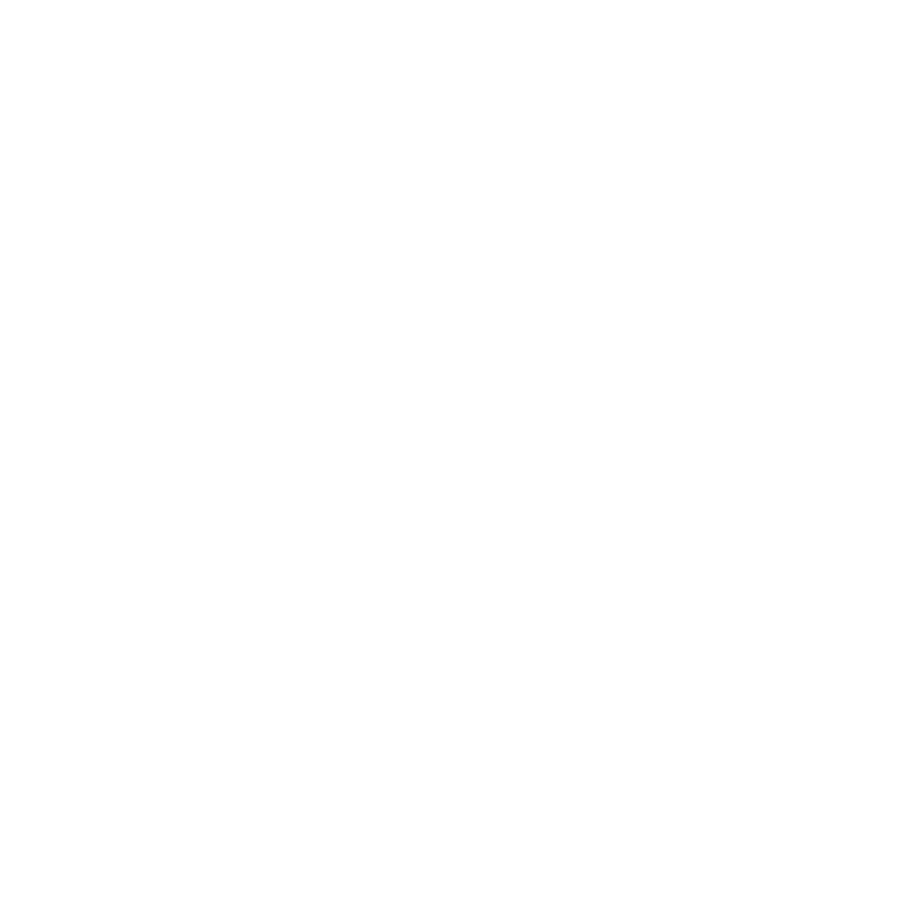 Riot Shield icon